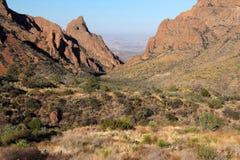 Ландшафт гор Chisos Стоковое Изображение RF