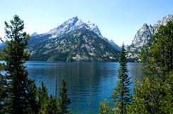 Ландшафт Дженни озера Стоковая Фотография RF