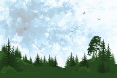 Ландшафт, деревья и небо Стоковое Изображение