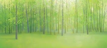 Ландшафт леса вектора зеленый иллюстрация вектора