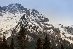 Ландшафт леса и горы ели деревянный с снегом Стоковые Изображения