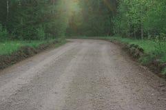 Ландшафт леса пригорода дороги Стоковые Изображения