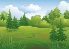 Ландшафт, лес лета иллюстрация штока