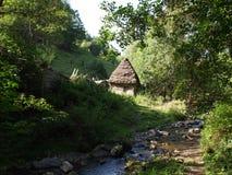 Ландшафт лета высокогорный с зелеными полями и долинами, отрубями, Трансильванией, Румынией, Европой Стоковая Фотография RF