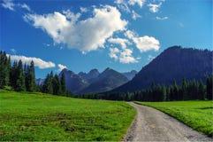 Ландшафт лета высокого Tatras в Словакии Стоковые Изображения RF