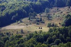 Ландшафт лета в горах Apuseni Стоковое Изображение RF