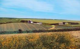 Ландшафт лета в Корнуолле, Великобритании Стоковое Изображение RF