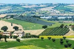 Ландшафт лета в мартах (Италия) Стоковая Фотография