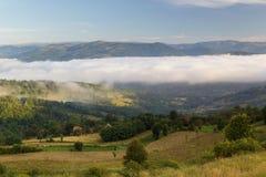 Ландшафт лета в прикарпатских горах, в Moeciu - отрубях, Румыния стоковая фотография rf