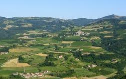 Ландшафт лета в Langhe (Италия) Стоковые Изображения