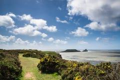 Ландшафт лета головы червя и Rhosilli преследуют в Уэльсе Стоковое Фото