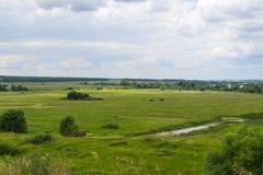 Ландшафт лета зеленых полей и облачного неба сельское место Стоковое Фото