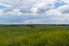 Ландшафт лета зеленых полей и облачного неба сельское место Стоковая Фотография RF