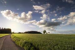 Ландшафт лета или осени стоковые изображения rf