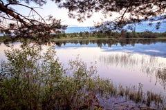Ландшафт лета на реке Стоковое Изображение RF