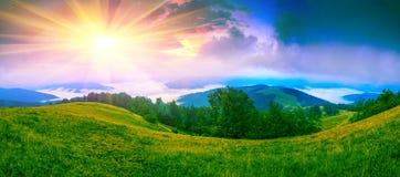 Ландшафт лета прикарпатский Стоковые Изображения RF