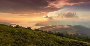 Ландшафт лета прикарпатский Стоковые Фотографии RF