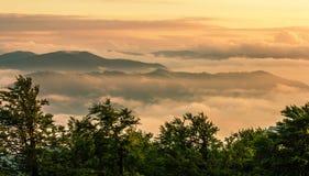 Ландшафт лета прикарпатский Стоковое фото RF