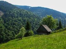 Ландшафт лета сельский в unspoiled природе Стоковые Изображения RF
