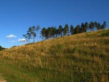 Ландшафт лета сельский в unspoiled природе Стоковое Изображение RF