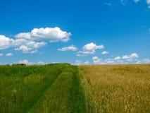 Ландшафт лета сельский между красивыми облаками Стоковые Фото