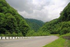 Ландшафт лета с горами зеленого цвета Кавказа стоковые изображения
