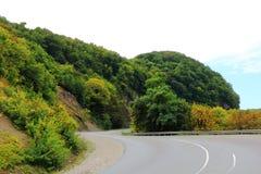 Ландшафт лета с горами зеленого цвета Кавказа стоковое изображение