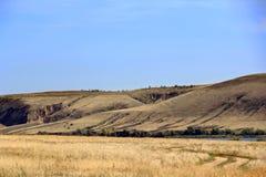 Ландшафт лета с горами и промоиной стоковое изображение rf
