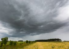 Ландшафт лета с небом шторма над полем рож Стоковое Изображение