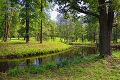 Ландшафт лета с озером в саде Gatchina, Стоковые Изображения RF