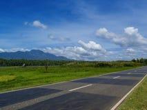 Ландшафт лета с дорогой через сельскую землю Взгляд тропической природы яркий от шоссе Стоковое Фото