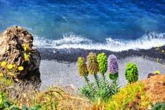 Ландшафт лета с пляжем Остров Мадейры Стоковые Изображения RF