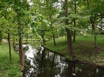 Ландшафт лета с рекой и лесом Стоковая Фотография
