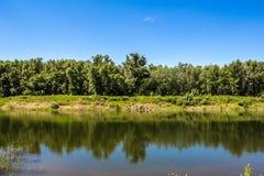 Ландшафт лета с рекой и небом Стоковое Изображение