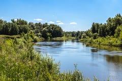 Ландшафт лета с рекой и небом Стоковое Изображение RF