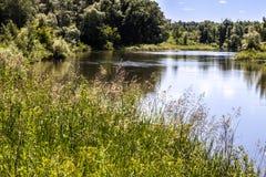 Ландшафт лета с рекой Стоковое фото RF
