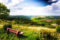 Ландшафт лета с сиротливой деревянной скамьей Стоковое фото RF