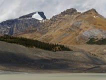 Ландшафт ледника Колумбии Icefields скалистый с снегом Стоковые Изображения