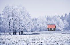 ландшафт заморозка Стоковые Изображения