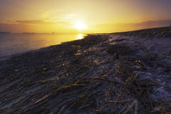 Ландшафт захода солнца зимы стоковая фотография rf