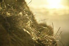 Ландшафт захода солнца над горами Стоковые Фото