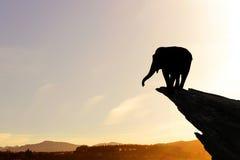 Ландшафт захода солнца сафари Стоковые Фото