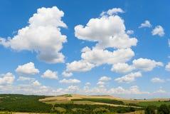 ландшафт зеленого цвета травы поля Стоковые Фотографии RF