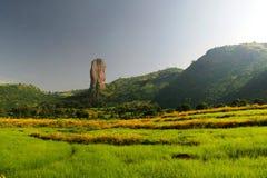 Ландшафт земледелия в Эфиопии стоковое изображение rf