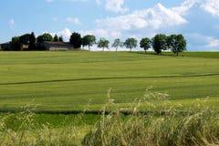 Ландшафт зеленого холма Стоковые Изображения RF