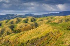 Ландшафт зеленых холмов Стоковое фото RF