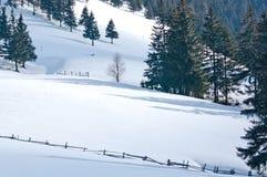 Ландшафт зимы в горах Стоковые Изображения