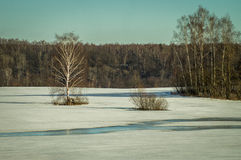 Ландшафт зимы в России (зона Kaluga) стоковое изображение rf