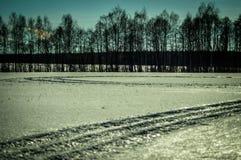 Ландшафт зимы в России (зона Kaluga) стоковая фотография rf