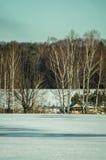 Ландшафт зимы в России (зона Kaluga) стоковые изображения